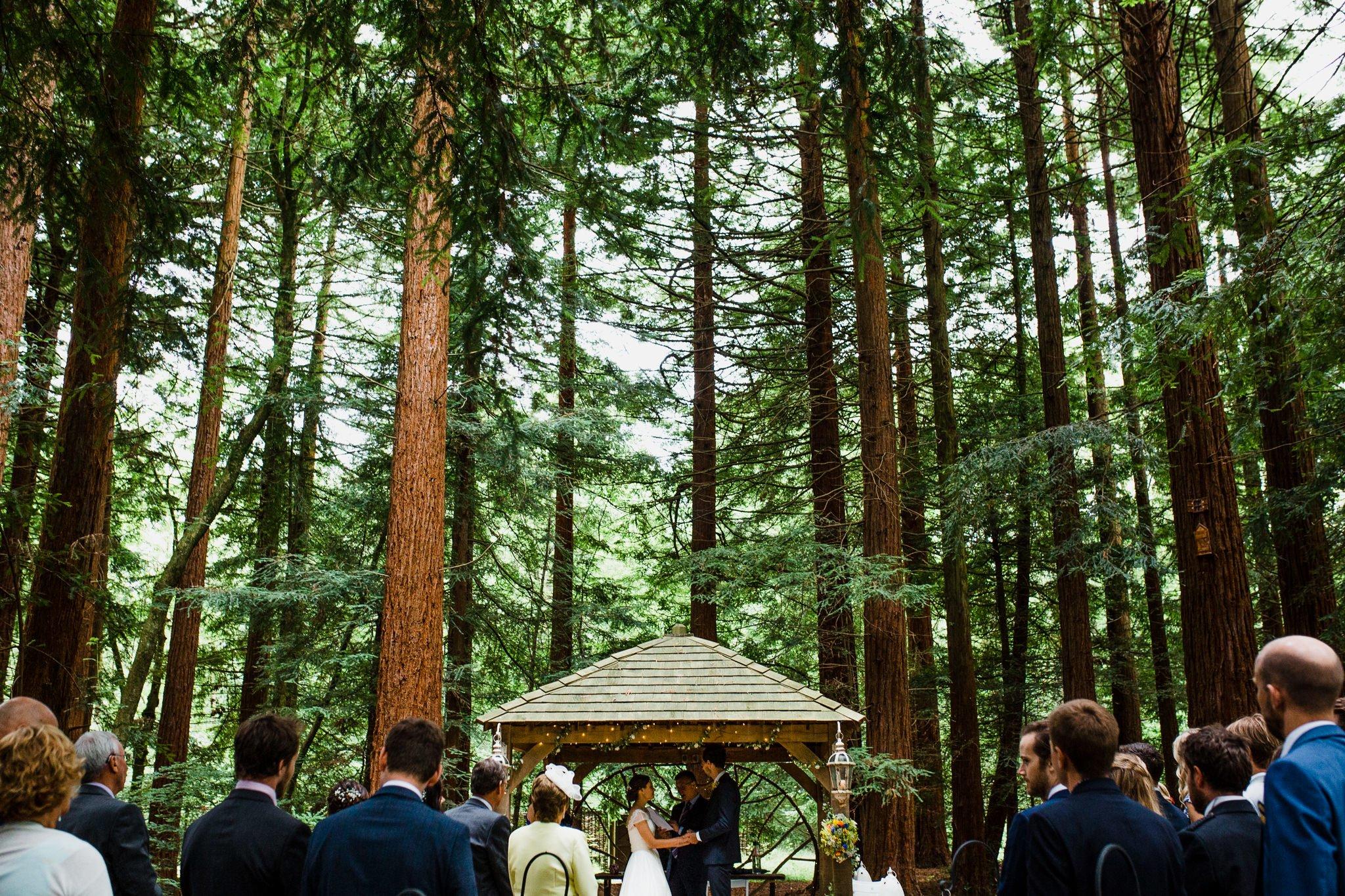 Woodland wedding photographer